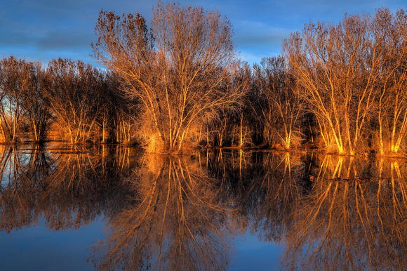 BOSQUE DEL APACHE sunset (1)