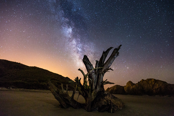 Milky Way over Oregon (1)
